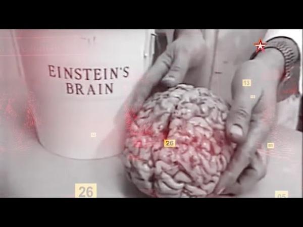 Украденный мозг: загадка Эйнштейна - Улика из прошлого 04 09 2018