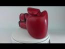 Перчатки для бокса Fairtex Boxing gloves BGV14 Red.mp4