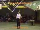 Hung Ga Kung Fu ГУНЬ 3 формы.