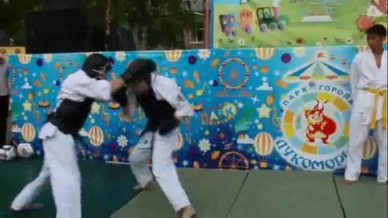 6. Club-Budo_NipponKempo_fight.mp4
