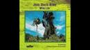 Jean-Marie Brice feat. Ethno-Trance-Ensemble - Jungle Fever
