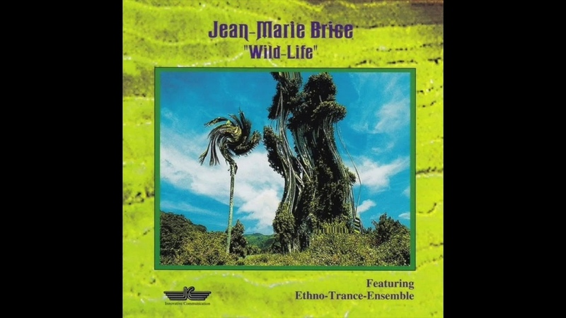 Jean Marie Brice feat Ethno Trance Ensemble Jungle Fever