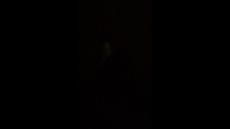 Семейные мелодрамы в 02:46 ночи 😆😆😆