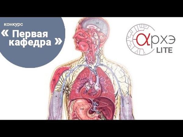 АрхэLite Сергей Кучер Посттравматическая диафрагмальная грыжа