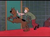 El Show de Scooby Doo 3x11