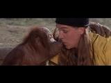 Джей и молчаливый Боб наносят ответный удар - Знакомство с обезьяной