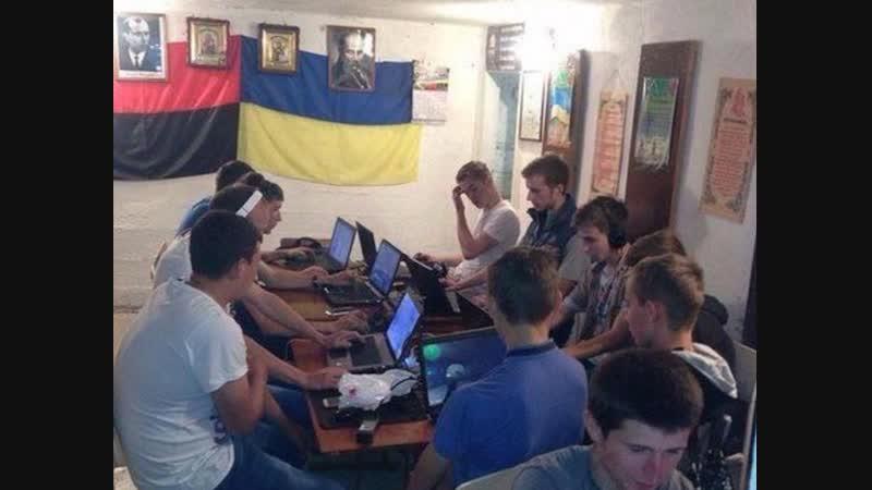 Украинские кролики гибридной войны