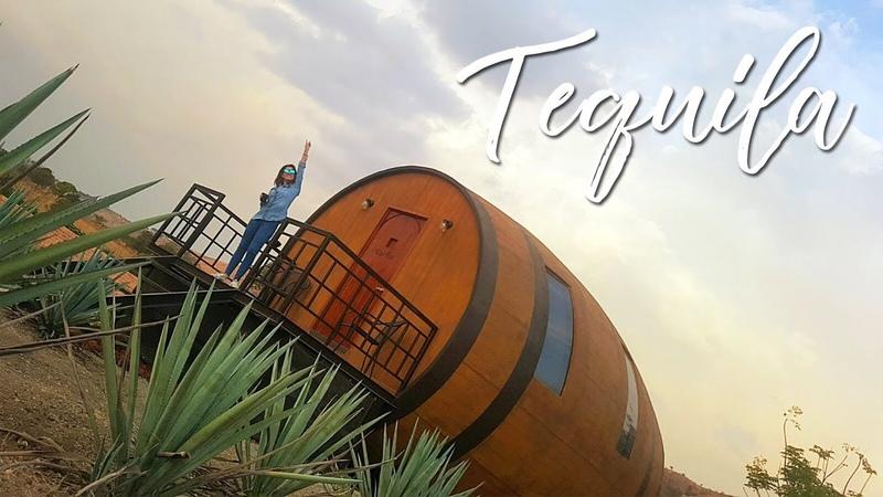 Tequila | A dónde ir - Qué hacer - Dónde Comer - Qué visitar con Ale Sanguz