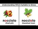 Italian Phonetics Part 4: Accents and Stresses