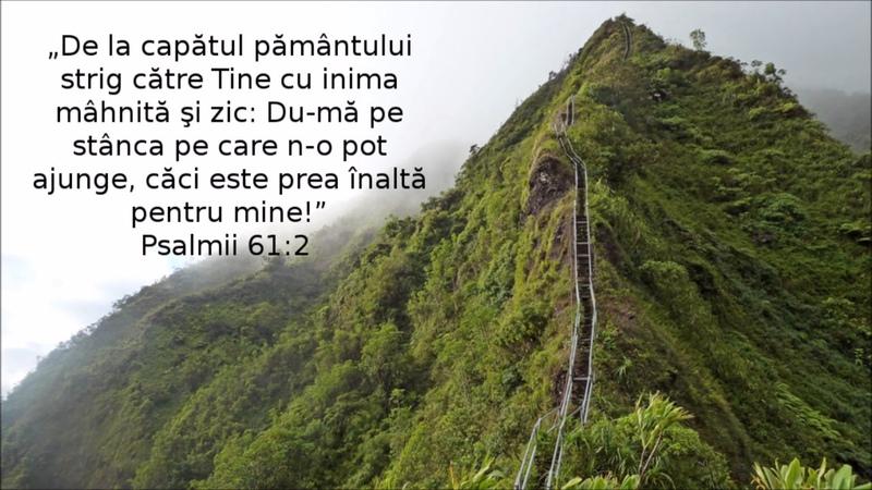 Nicu Cozma - Spre cer încerc a mă sili