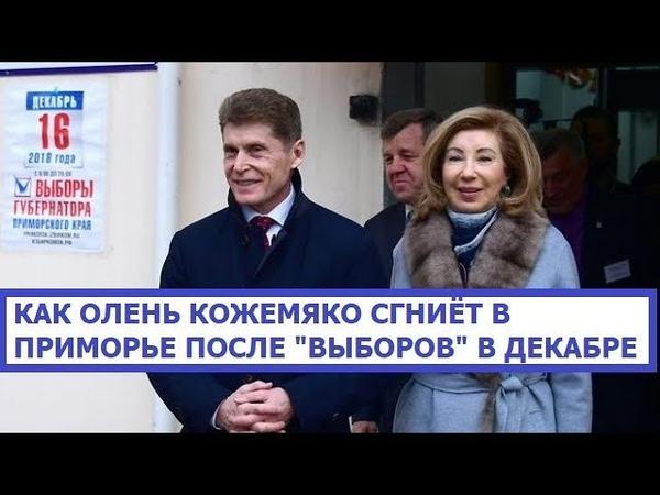 Как Олег Кожемяко Сгниёт в Приморье после Выборов