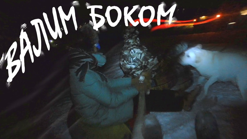 Трио и собака Chester на тюбинге ночью. Покатушки на ватрушке от первого лица.