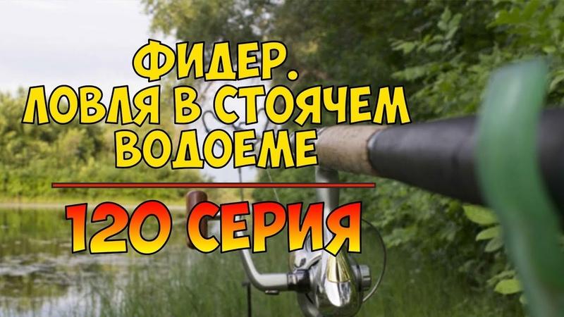 Серия 120. Фидер. Ловля в стоячем водоёме. Рыбалка с Нормундом Грабовскисом.