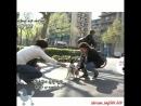 Испанская собачка и Хен Джун