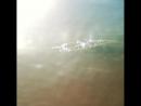 Octo de nihil summer shadow тень лета