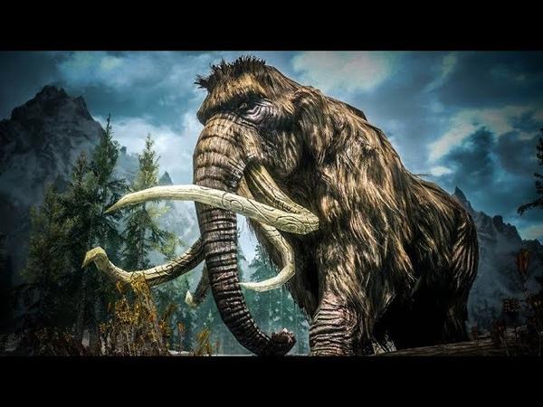 Бивень мамонта / Древние находки