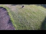 REMO HOBBY SMAX - Bashing At The Skate Park