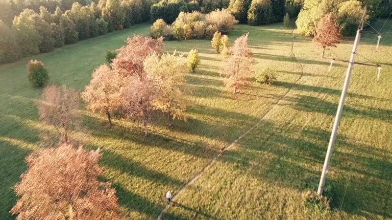 Здорова, Осень. VideoLook