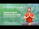 Здоровый позвоночник Как избавиться от боли в спине Вебинар 18 сентября 2018 в 19 30 МСК