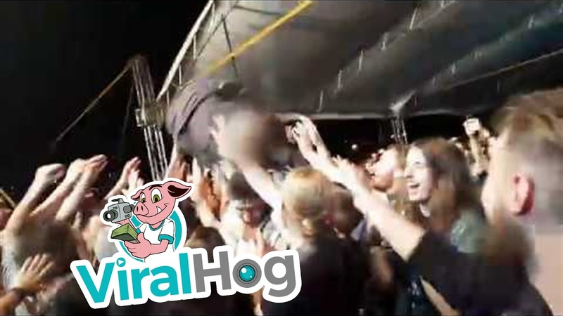 Crowdsurfing Fail || ViralHog