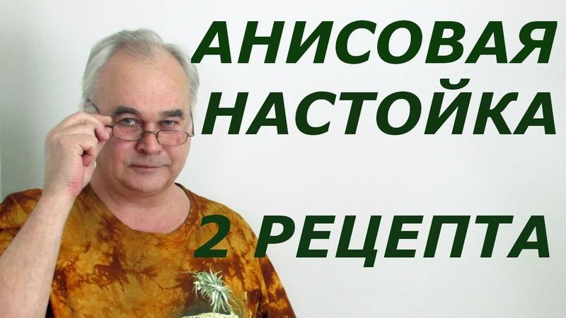 Анисовая настойка Рецепты настоек СамогонСаныч