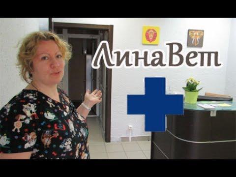 Открытие ветеринарной клиники Лина Вет