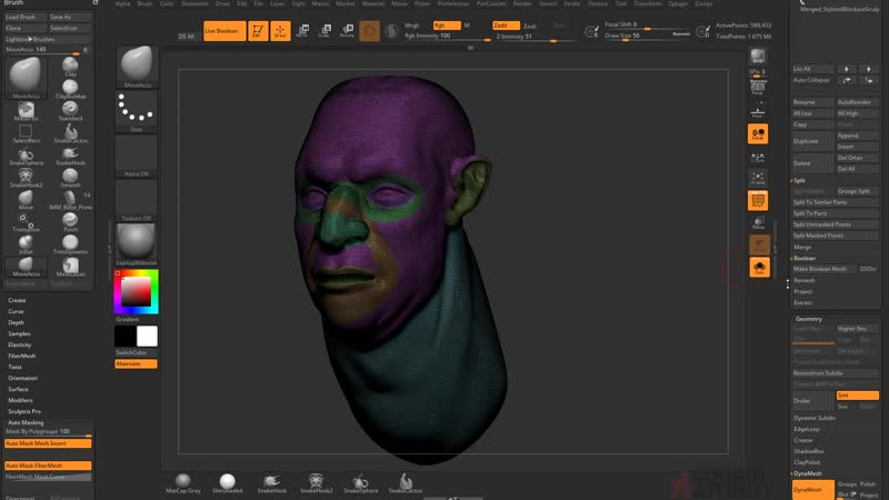 02. ZRemesh Facial Topology