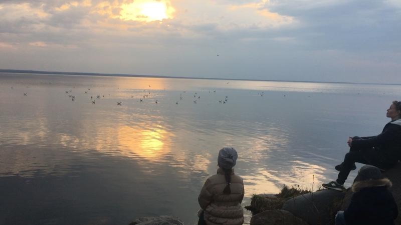 Плещеево озеро 🙂🙂🙂