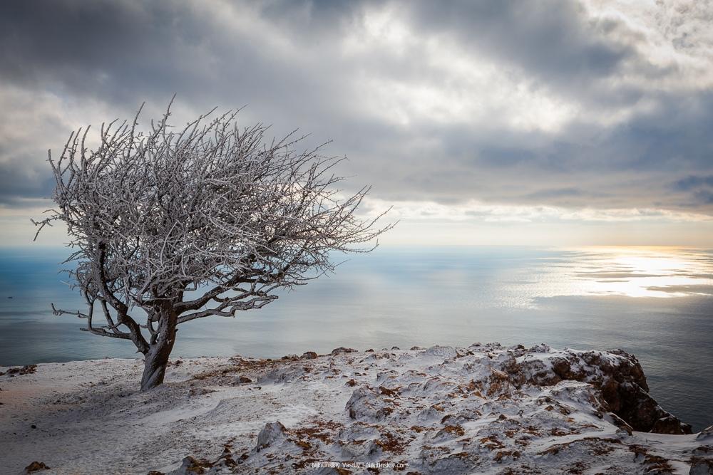 #Крым2019 : в горы