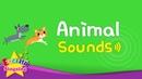 Kids Vocabulary - Animal Sounds - Various Animal Sounds- Learn English for kids -