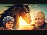 Сиротка / Orphan Horse (2018) BDRip 1080p