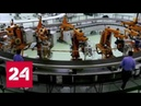 Реактор в кармане: российские ученые приблизились к созданию атомной батарейки - Россия 24