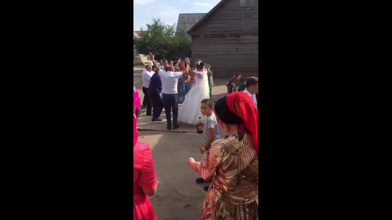 Гуляем на свадьбе Воронеж