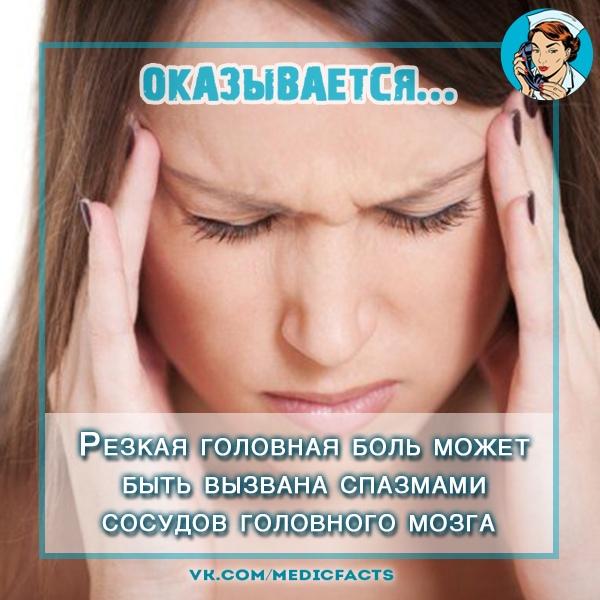 https://pp.userapi.com/c849028/v849028588/48efd/NdV9fMR0G9Y.jpg