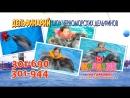 Дельфинарий в ТРЦ Коллаж, 11 сент-14 окт