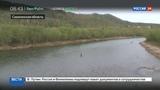 Новости на Россия 24 На ловлю самой вкусной рыбы Сахалина осталось две недели