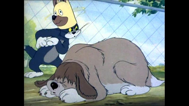 Том и Джерри - в собачьей шкуре - Самые смешные серии 1