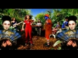 Imani_Coppola_I_m_a_Tree_Official_Music_Video