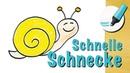 Schnecke zeichnen lernen - How to draw a Snail (Cartoon)