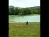 Когда приехал купаться, первый раз за лето (VHS Video)