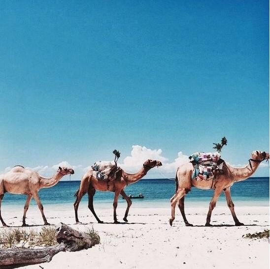 Туры в Марокко на 11 ночей за 29500 с человека в августе