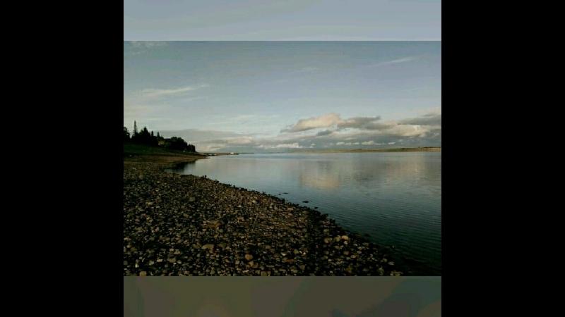 Природа района нашего Печорского