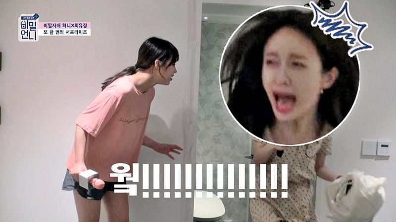 유정(Yoo Jung)이 서프라이즈에 놀란 하니(HANI) 공중부양↗ (인생짤 탄생) 비밀언니(secretsister)