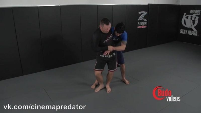 Sweeping Hip Throw