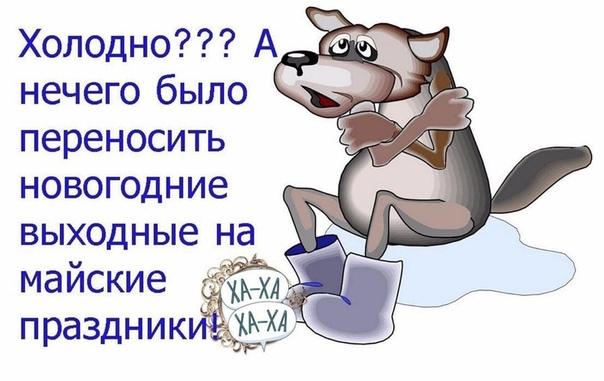 https://pp.userapi.com/c849028/v849028874/189144/evnlMEt-XWk.jpg