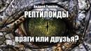 Рептилоиды - враги или друзья? Андрей Тюняев