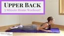Тренировка верхней части спины за 5 минут Upper Back Workout Strengthen and tone your upper back in 5 minutes