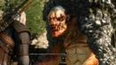 The Witcher 3 Wild Hunt Прохождение ► 017