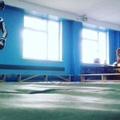 pit_bull_.03 video