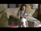 Эрмитажный кот-предсказатель Ахилл прогнозирует победу России в матче со сборной Египта